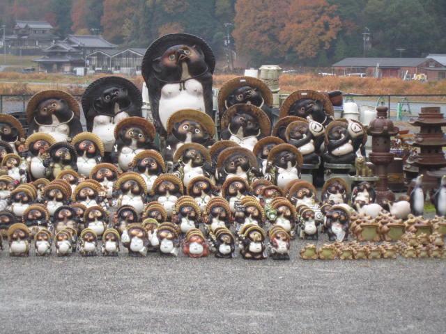 tanuki_sama